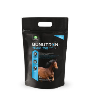 3Kg-cheval2-nutrition-audevard-bonutron-yearling