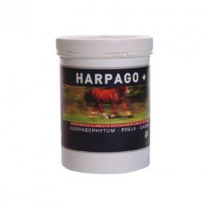 Complément alimentaire pour chevaux Harpago plus