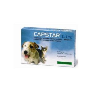 Capstar anti puce pour chien et chat