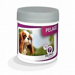 univers-veto-pet-phos-pelage-chien-vitamines