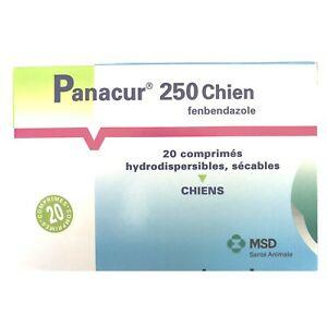 univers veto Panacur 250 vermifuge pour chien 20 comprimés