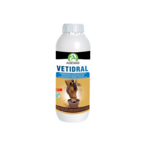 Audevard-chevaux-vetidral