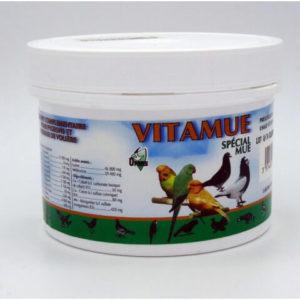 Univers véto vitamines pigeons