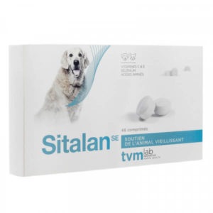univers-veto-sitalan-vitamines-vieux-chat-chien