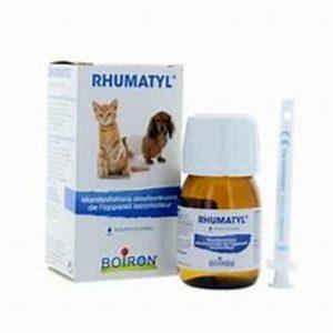 univers-veto-rhumatyl-boiron-homeopathie-articulation