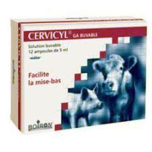 univers-veto-cervicyl-homeopathie-accouchement-mise-bas